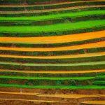 【絶景】ベトナムで一番美しい棚田 イエンバイ省ムーカンチャイ。