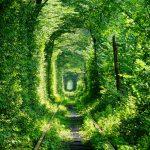 【絶景】ウクライナ 愛のトンネルの行き方【2016年】